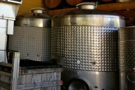 An Introduction on Low Temperature Fermentation in Wine Production