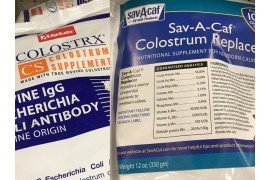 Colostrum Supplements and Replacer