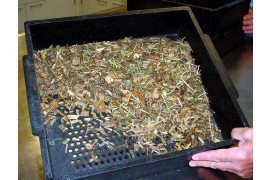 Methods Used to Measure Forage and Ration Particle Size