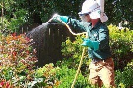 Choosing a Qualified Pest Management or Lawn Care Company