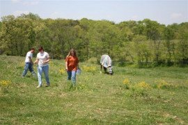 Walking Pastures - Important Step in Pasture Management