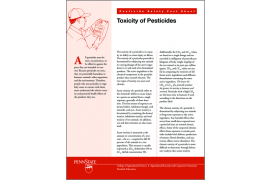 Toxicity of Pesticides