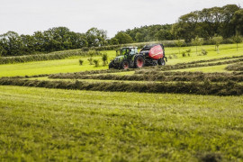 Putting Forage Quality in Perspective