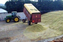 Penn State Corn Silage Bunker Density Study Summary Report