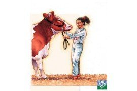 Figure 1. Animal handling may range from moving groups of animals to leading an individual animal by halter (Picture courtesy of North American Guidelines for Children's Agricultural Tasks, www.nagcate.com).