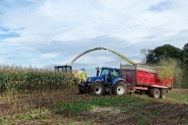 Corn Silage Production and Management