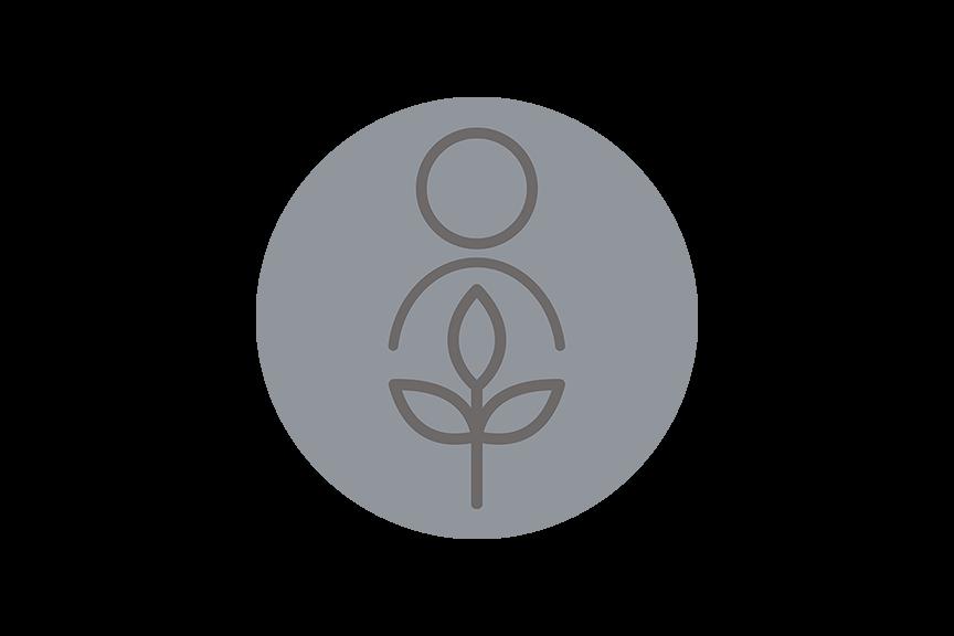 Blueberry Disease - Powdery Mildew, Not Symptoms You'd Expect