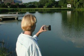 Water Quality Concerns for Ponds
