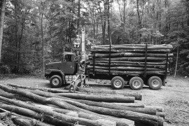 Dealing with Local Timber Harvesting Ordinances