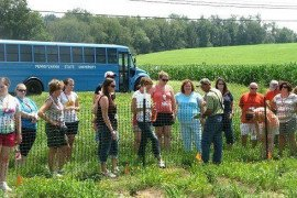 Bioenergy Crops Site Tour July 2013