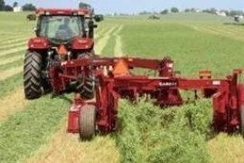 Forage cutter