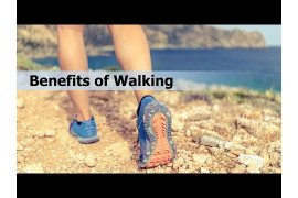 Walking Facts for a Healthy Lifestyle