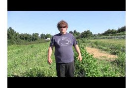 Potato Grower Interview