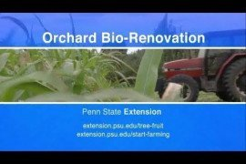 Orchard Site Preparation: Bio-renovation