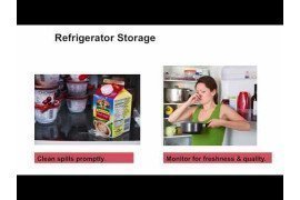 Refrigerator and Freezer Storage Guidelines