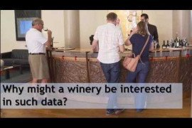 Consumer Attitude and Behavior toward Wine Purchases: Purchasing Patterns
