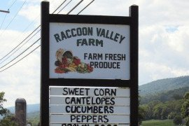 On the Road: Raccoon Valley Farm