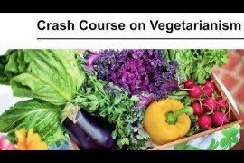 Crash Course on Vegetarianism