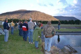 Managing Your Pond or Lake