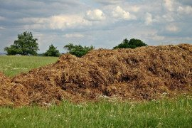Pennsylvania Farm-A-Syst: Worksheet 10: Animal Waste Land Application Management