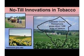 No-Till Innovations in Tobacco