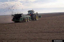 Use of Biosolids in Crop Production