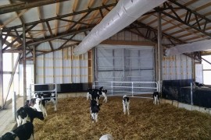 Calf Barn