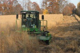 Fall Harvest of Switchgrass in Northwest PA