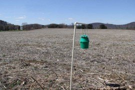 Black Cutworm trap. by Mark Madden, Penn State Extension