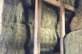 Are You Selling Hay Instead of Marketing Hay?