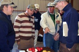 Dr. Rob Crassweller, second from right, organizes an apple variety sampling. Photo: Tara Baugher, Penn State