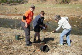 Master Watershed Steward Program participants Julie Thomas, Erin Uber and Linda Frederick plant a tree at a dam removal/stream restoration project. Photo by Erin Frederick