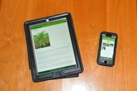 Smartphones and tablets can place volumes of agronomic data in your pocket.