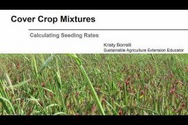 Cover Crop Mixtures: Calculating Seeding Rates