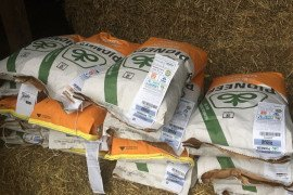 Bags of seed corn. Photo credit: Dwane Miller.