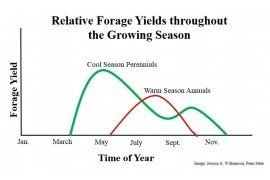 Extending the Grazing Season – Preparing for the Summer Slump