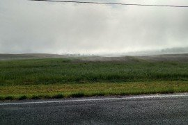 Low lying fog in fields may indicate a temperature inversion. (Photo credit: Dwight Lingenfelter