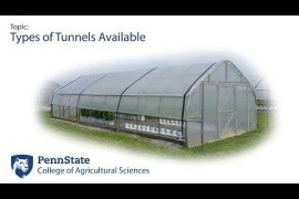 High Tunnel Research: Types of High Tunnels