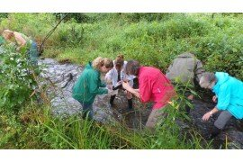 Master Watershed Stewards conduct stream monitoring as one of thier many projects around the state. (Photo: Erin Frederick, Penn State)