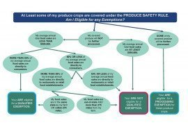Produce Safety Rule Exemptions Flow Chart