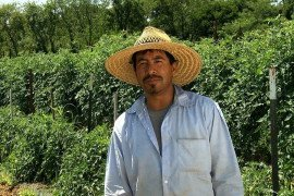 Arturo Diaz, Field Manager, is key to making sure best practices are put into place on the farm.