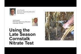 Using the Late Season Cornstalk Nitrate Test