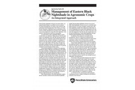 Integrated Approach- Management of Eastern Black Nightshade