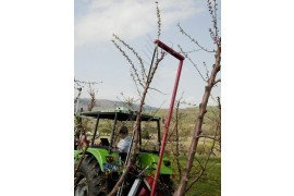 Orchard Automation - Crop Load Management