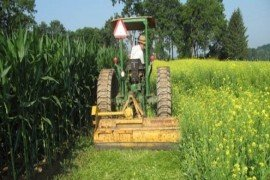 Reducing Soil Borne Diseases with Cover Crops