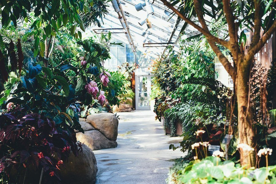 Improve Energy Efficiency in Greenhouses