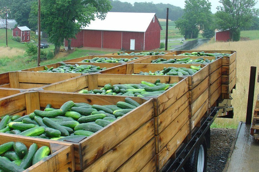 FSMA Produce Safety Rule - Coverage and Exemption Tool