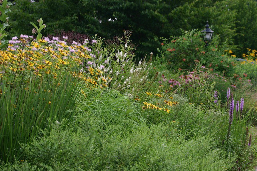 Planting Pollinator-Friendly Gardens